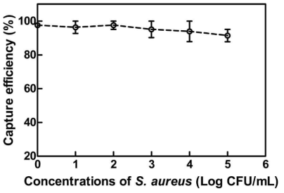 The capture efficiency (CE) of 0.4 mg immunomagnetic beads against S. aureus at a concentration of 4.10×100 CFU/mL to 4.10×105 CFU/mL.