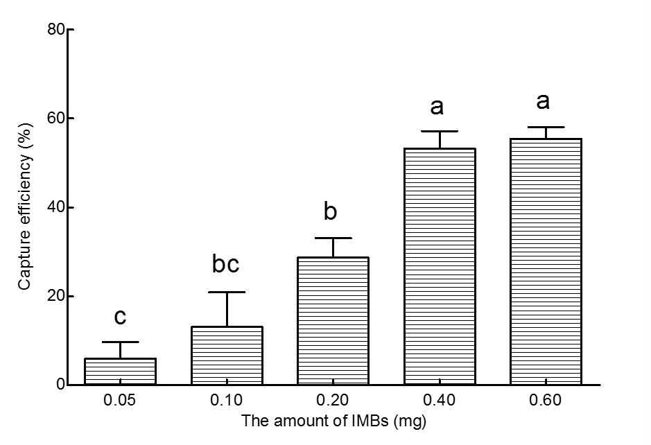 Effects of the amount of IMBs on the capture efficiency.
