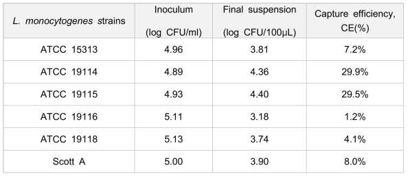 The Capture efficiency of immunomagnetic separation with L. monocytogenes strains.