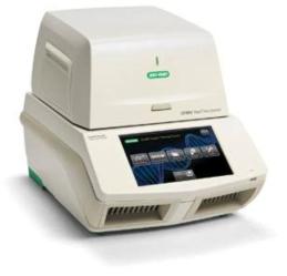 새로 구비하여 이용한 CFX-96 real-time PCR