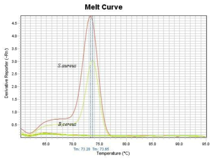 Melting curve analysis of the amplification products of S. aureus specific Sa442 DNA fragment in specificity test