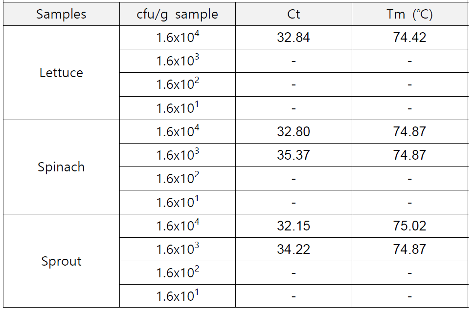 real-time PCR with gyrB primers for B. cereus