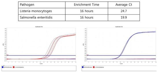 식품에 배양한 생균의 양과 Real-time PCR 결과의 상관관계 실험 결과