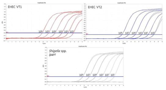 Multiplex Real-time PCR set 3의 민감도 테스트 결과