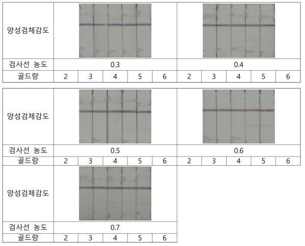 Shigella의 검사선 및 금-축합골드량 별 양성감도 테스트