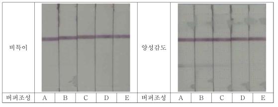 Shigella의 검체전개액 조성별 비특이 및 양성감도 테스트
