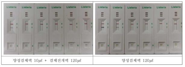 Listeria 양성검체의 검체전개액 및 배양액 감도 비교 및 한계검출 테스트