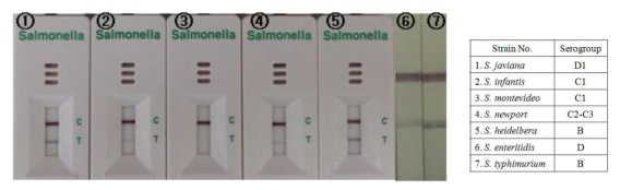 Salmonella kit의 민감도 테스트
