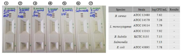 Staphylococcus aureus kit의 교차반응 테스트