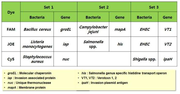 본 연구팀에서 개발한 multiplex real-time PCR kit의 구성