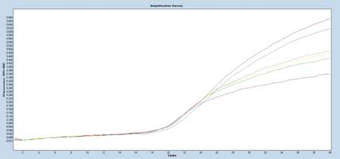 PCR amplification curves with Filter ROX 533-640 for internal amplification control (IAC)