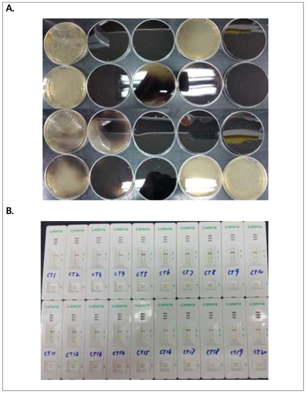 Validation results for cherry tomato inoculated with L. monocytogenes ATCC 19117