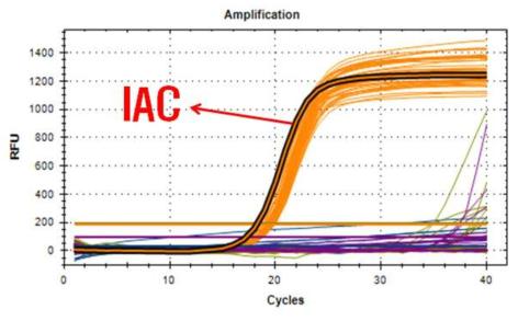 제2협동(코젠바이오텍) 개발 real-time multiplex pcr kit의 농산물 시료 검증