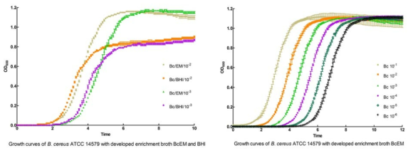 A) Comparison of growth curves of B. cereus with developed enrichment media BcEM and BHI at 35℃ for 10h. B) growth curves of B. cereus with serial dilution of inocula in developed enrichment media BcEM at 35℃ for 12h.