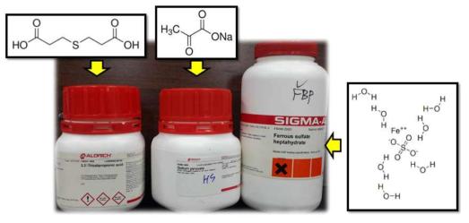 회복물질 후보군, 왼쪽부터(TDP, Na pyruvate, Ferrous sulfate)