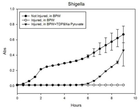 이질균 손상균에 대하여 BPW에 회복물질 첨가시 lag time 감소 확인