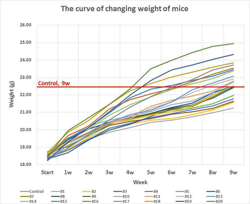 실험군(#1∼#20)과 Control의 9주간의 body weight 변화 그래프