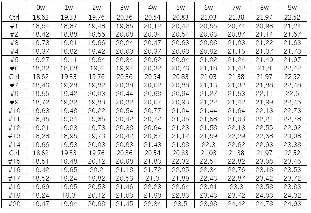 (#1~#20) 실험군 쥐들의 몸무게 측정표