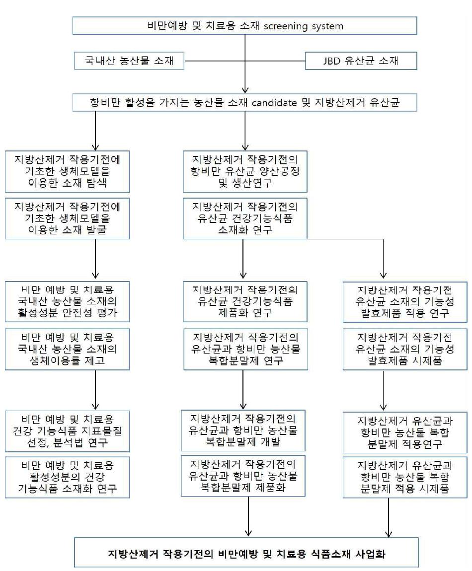 연구개발 추진체계