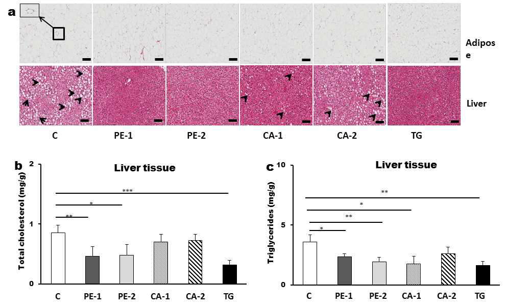Effects on tissue health in mice fed control, PE-1, PE-2, CA-1, CA-2, or Tangerine extracts in H&E staining (a), total cholesterol(b) and triglycerides(c) in liver.