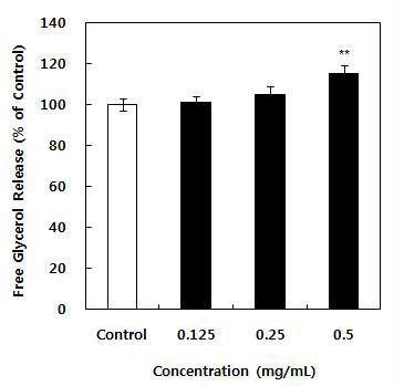 항비만 유산균 첨가 발효유 에탄올 추출물의 지방분해효과 (2)