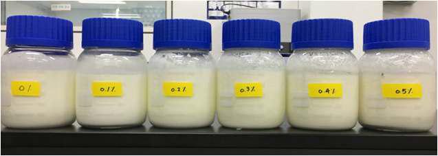 국내산 농산물 소재와 항비만 유산균을 함유한 발효유 시제품