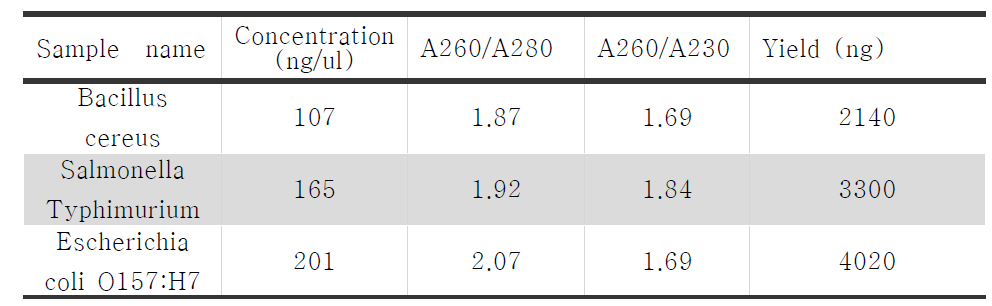 Whole Genome Amplification 샘플 농도 측정
