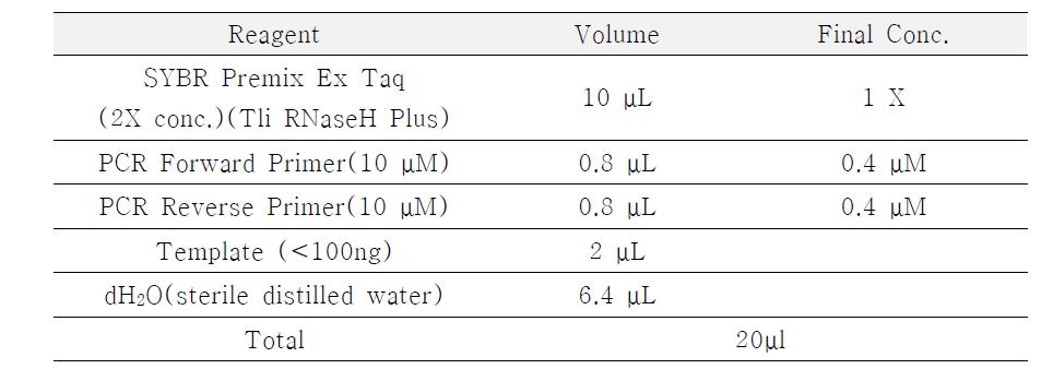 SYBR Q-PCR에 사용된 PCR 용액의 성분 조건