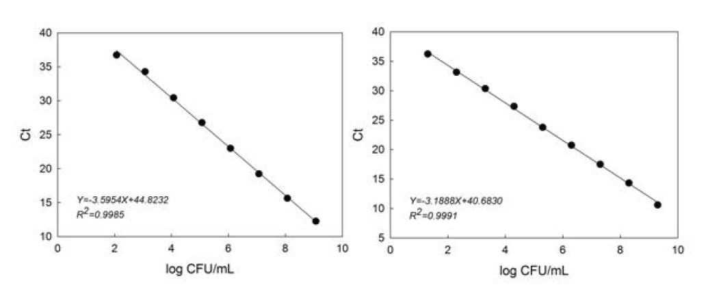 S. Typhimurium DNA 농도에 따른 TaqMan 및 SYBR green RT-PCR 정량 분석과 standard curves
