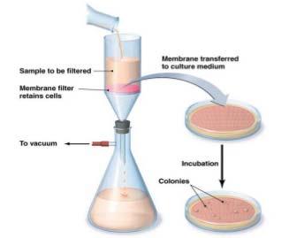 Membrane filtration workflow