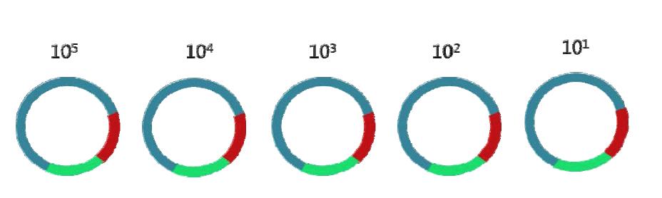 타겟지역을 포함하고 있는 DNA 표준물질