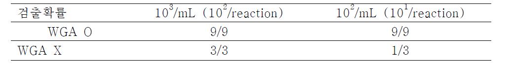 WGA 유무에 따른 E. coli O157:H7의 real-time PCR 검출 확률 비교