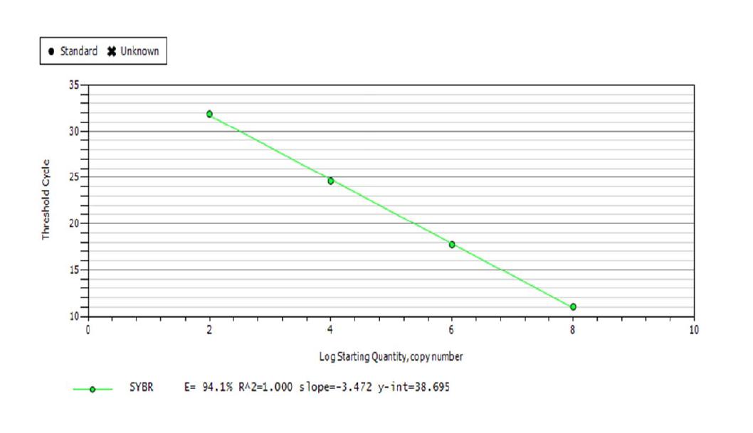 표준 DNA 양과 그들의 threshold cycle을 사용하여 작성된 standard curve