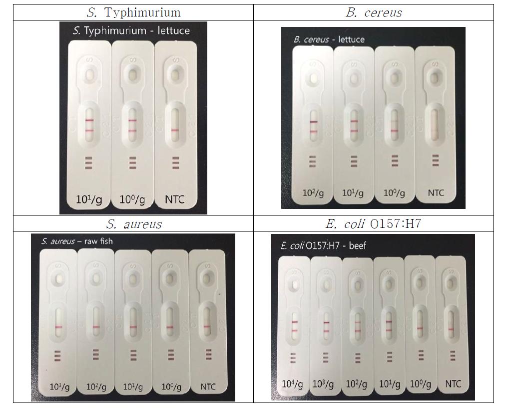 Filtration, WGA 후 PCR과 LFA를 사용한 식중독균 검출 방법 결과