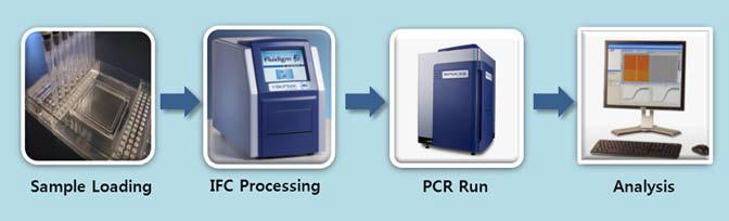 BioMark Digital PCR의 전체적인 진행 과정