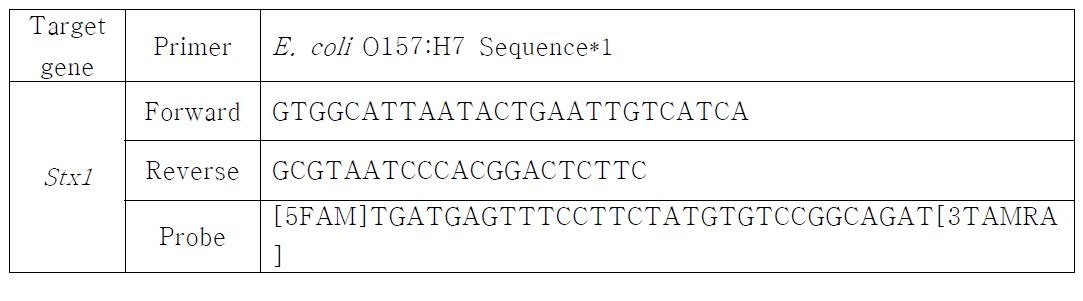 E. coli O157:H7 검출을 위한 primer 및 probe sequence