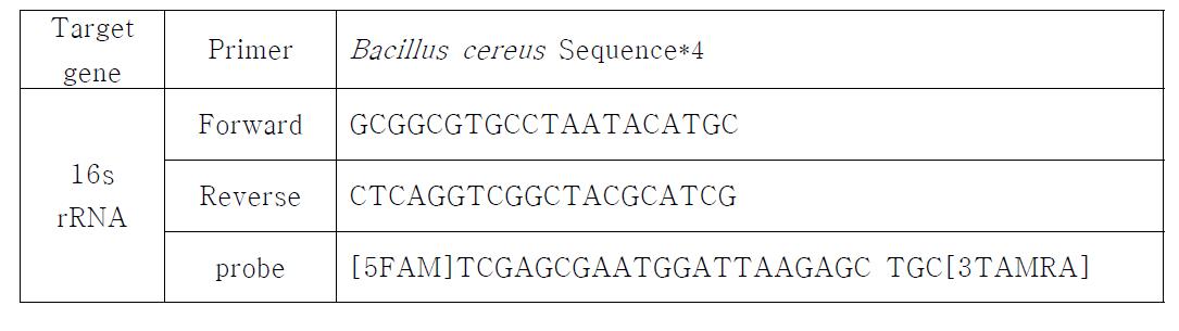 Bacillus cereus 검출을 위한 primer 및 probe sequence