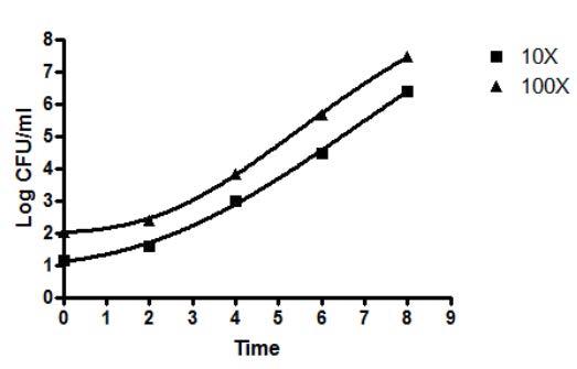 필터여과지를 미생물배지에서 배양한 균의 성장 곡선
