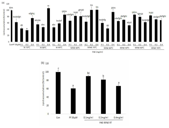 Effects of PAE on adipogenesis and differentiation in 3T3-L1 adipocytes.