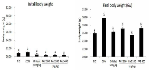 Comparison between Initial body weight and 6w body weight.
