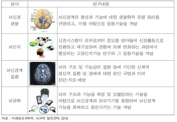 뇌과학 4대 분야 및 연구내용