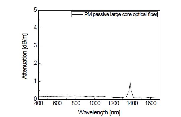 수동형 PM 기반 대면적 광섬유의 광손실