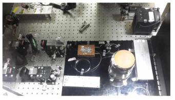 10W 급 단일편광 연속광 레이저