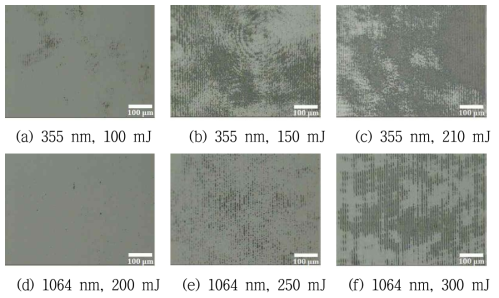 2-beam interference 패턴(광학현미경), Fe-Ni 합금