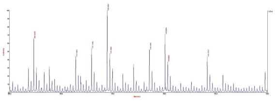 합성된 olive base 색재의 MALDI-TOF-MS 스펙트럼