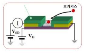 전계효과 트랜지스터를 이용한 센서 구조