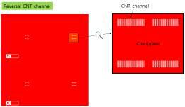 CNT 채널 패턴