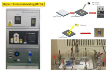 SWCNTs의 표면에 결함을 형성하기 위해 사용된 RTA 장비 및 센서측정 셋업.