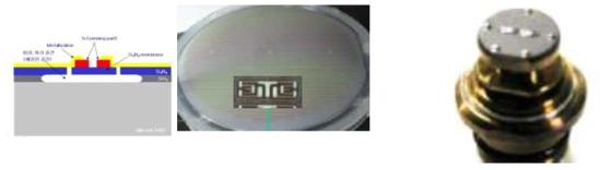 Bulk MEMS 압력소자 및 센서 구조