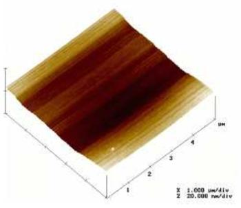 절연막 형성 후 표면 조도 분석